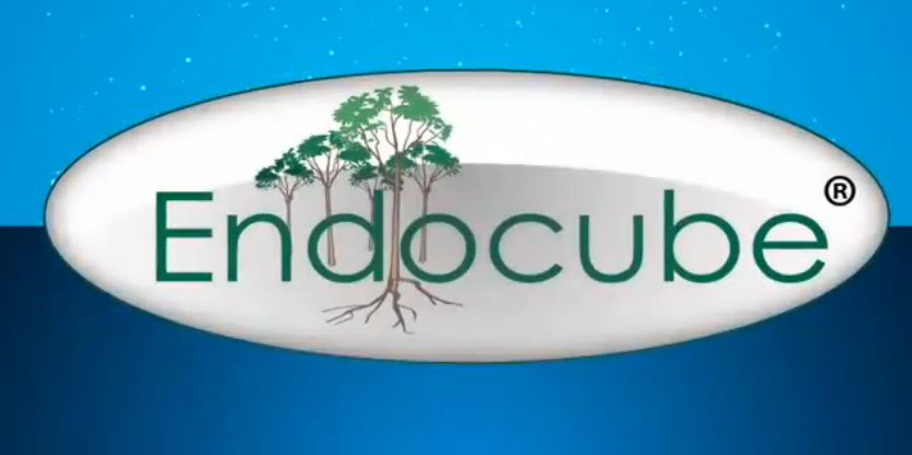 Endocube Energy Saving